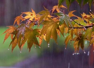 pioggia-autunno01-579x420