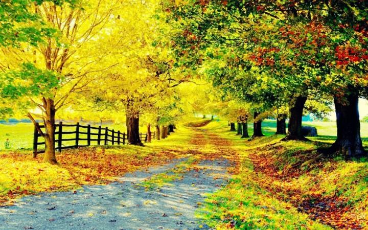 autunno-e1381439458868