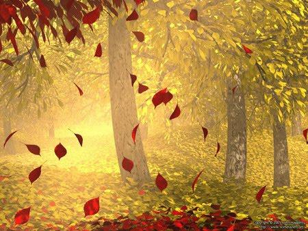 caduta-foglie