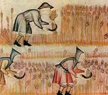 monaci e agricoltura