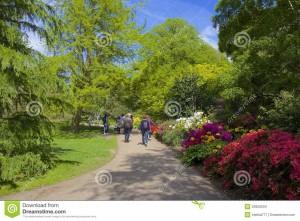 giardino-floreale-nel-parco-di-greenwich-londra-53920534
