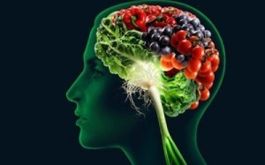 cervello-e-alimentazione
