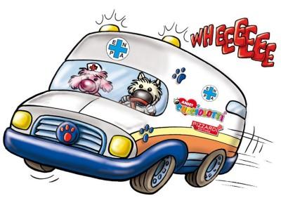 ambulanza-bimbi