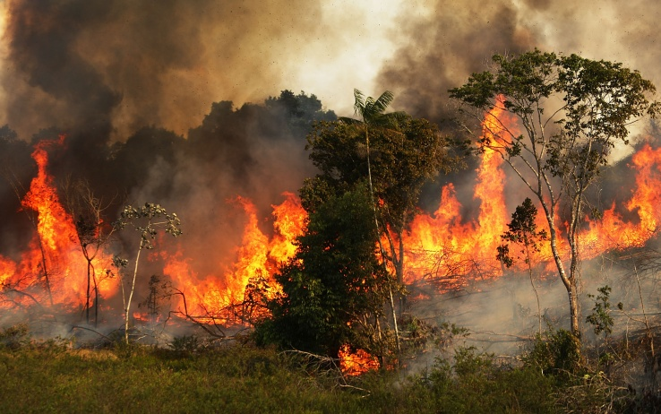 ZE DOCA, BRAZIL - NOVEMBER 22:  A fire burns trees next to grazing land in the Amazon basin on November 22, 2014 in Ze Doca, Brazil. Fires are often set by ranchers to clear shrubs and forest for grazing land in the Amazon basin. The non-governmental group Imazon recently warned that deforestation in the Brazilian Amazon skyrocketed 450 percent in October of this year compared with the same month last year. The United Nations climate change conference begins December 1 in neighboring Peru.  (Photo by Mario Tama/Getty Images)
